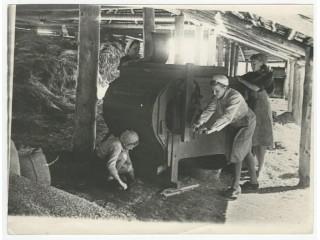 Очистка зерна, 1942 год.